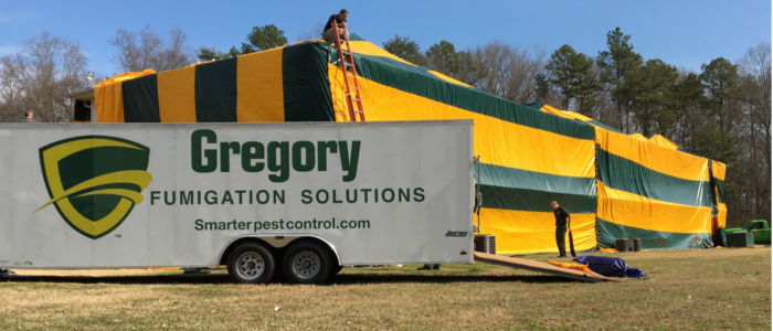 Gregory Pest Fumigation Services
