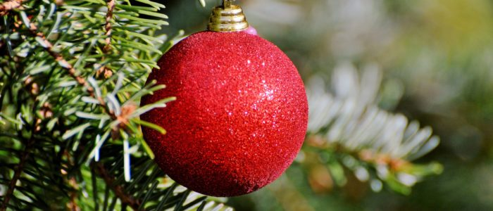Quick Tips to Keep Your Holiday Decorations Pest Free