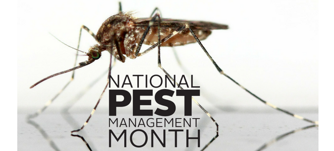 Gregory Pest Solutions Participates in National Pest Management Month