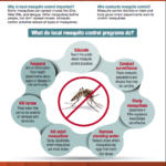 Floodwaters Prompt Emergency Mosquito Treatment Across South Carolina