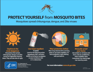 mosquito bite protection