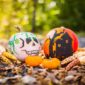 5 Storage Tips to Preserve Your Fall Decorations