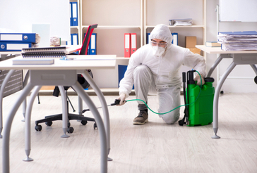 Gregory disinfection services Disinfectix